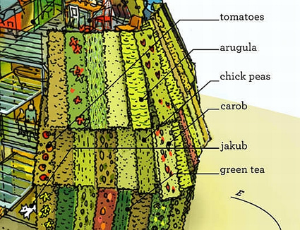 casa_sostenibile_rios_clementi_hale_casa_sostenibile_agricoltura_urbana_casa_sostenibile_3