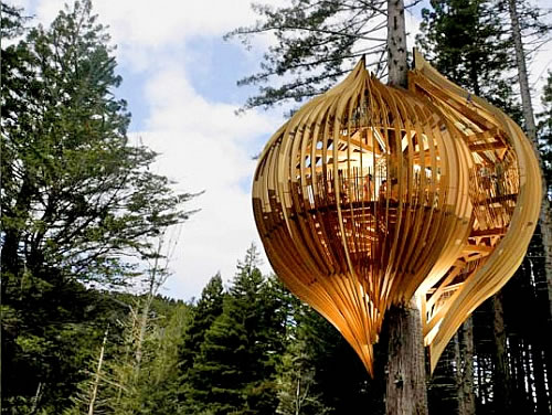 yellow-treehouse-restaurant-in-new-zealand-2